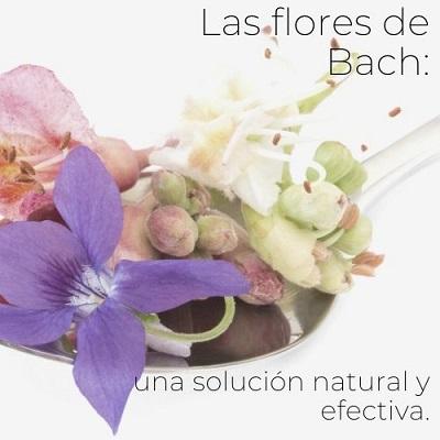 flores de bach para adelgazar cuales son los sintomas